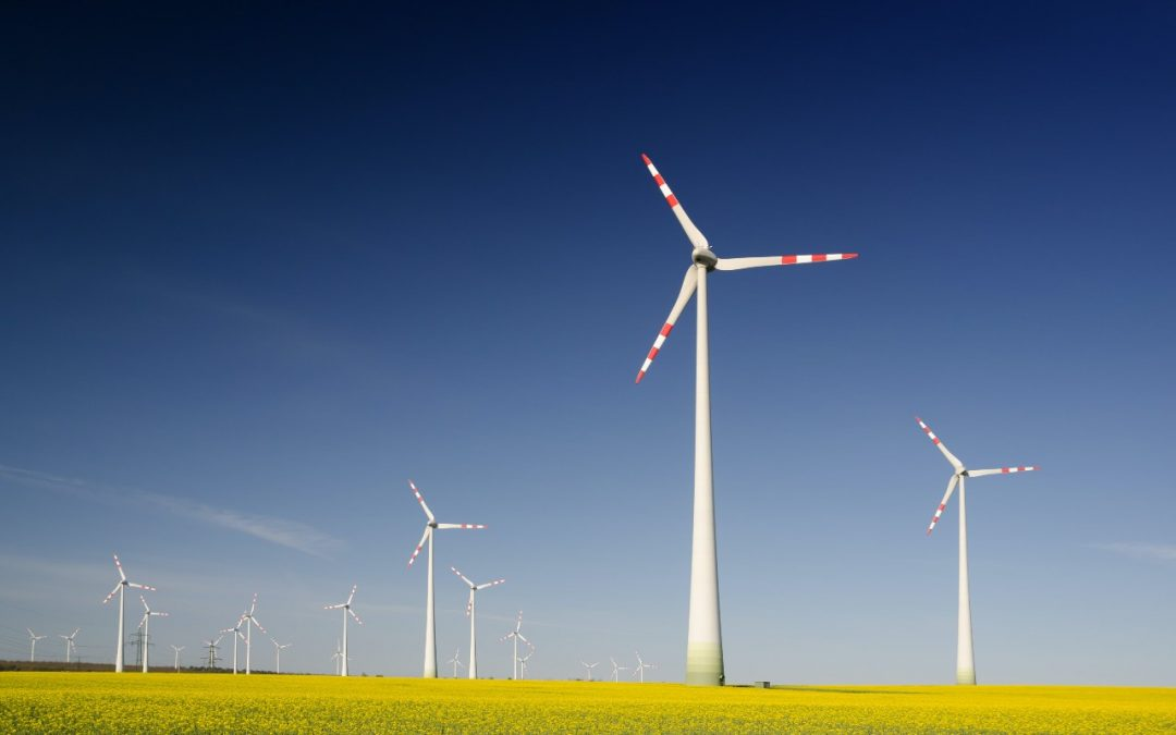 Kom i gang med bæredygtighed